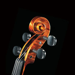 The leading brand for high quality student violins · Stentor Music